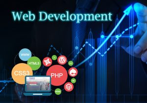 Things To Look For In A Web Development Company